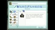 Игра - Sims 2 Castaway (survivor)
