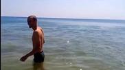 Делфин забавлява хората на плажа