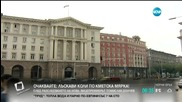 Кабинетът създава съвет, който да подготви влизането ни в Еврозоната