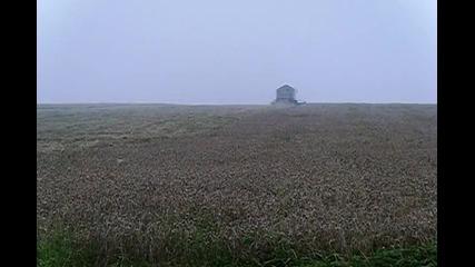 жътва на пшеница в мъгла