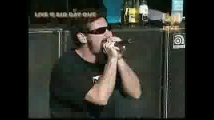 Needles - System of a down (live)