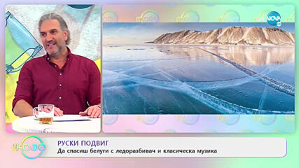 "Руски ледоразбивач спаси белуги с класическа музика - ""На кафе"" (09.04.2021)"