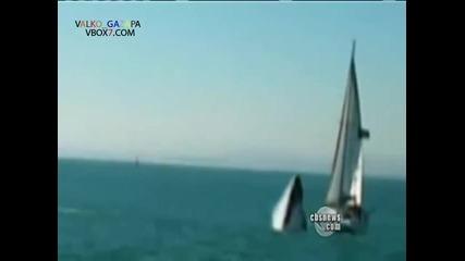 40 - тонен кит разбива яхта!