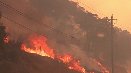 USA: Firefighters battle flames in Napa Valley's St. Helena