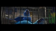 Rio / Рио (2011) Бг Аудио Част 1/4 Dvd rip