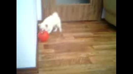 малката мони и червения балон :ь