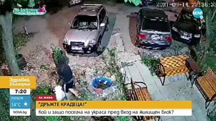 """""""ДРЪЖТЕ КРАДЕЦА"""": Мъж задигна украса пред вход на блок"""