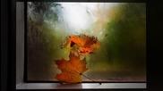 Джеймс Ласт - Одиночество и осень ( Одинокий пастух)