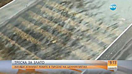 Треска за злато - хиляди атакуват реките в търсене на ценния метал