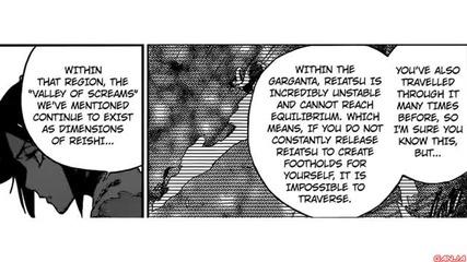 Bleach manga 625 (bg sub)