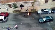Двойка питбули нахапват човек New York
