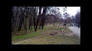 malko iz parka