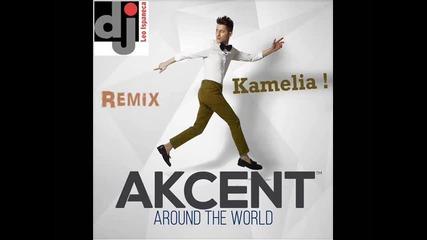 Akcent ft. Lidia Buble & Ddy Nunes & Dj Leo Ispaneca -kamelia Remix 2014