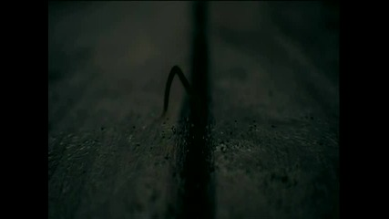 Превод* Evanescence - Good Enough (dvd Rip)(high Quality)