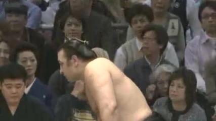 Котоошу-кисеносато-сумо