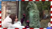 Деца в зоопарка - Смешна компилация