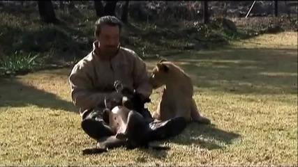 животно и човек,една голяма любов