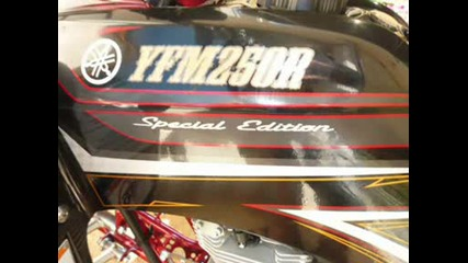 2oo9 Yamaha Yfm250 R Special Edition