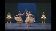 Swan lake Paris Opera 10