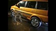 car pisses at dog
