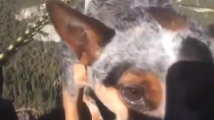 Dean Potter - Whisper Dog Slacklines