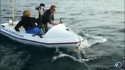 Фотографи дълго ще помнят срещата си с голяма бяла акула !