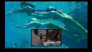 Кой Иска Да Попее?: Kate Alexa - No ordinary girl (кейт Алекса - Необикновена съм) - Част 1