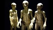 Нло и извънземните раси