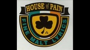 house of pain Shamrocks and shenanigans butch Vig Remix