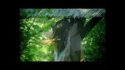 Deniq Pencheva/дения Пенчева - Sun sanuvah/сън сънувах