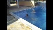 Златни пясъци 2011г. Лучи плува в басейна (не чеможе да плува)!!!