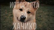 Историята на най-преданото куче : Хачико