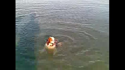 куче се гмурка под вода
