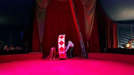 Цирк ''Арена'' в Бургас 2020. Свилен Кехайов с понитата Мартин, Поля, Фиона и Мелани