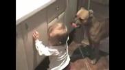 Момиченце И Куче - Жестоко! :)