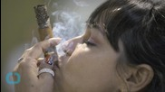 What's in a Name? Cuban Cigars Plant Legal Seeds for U.S. Future