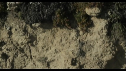 Mac Miller - Missed Calls (prod. By Ritz Reynolds)
