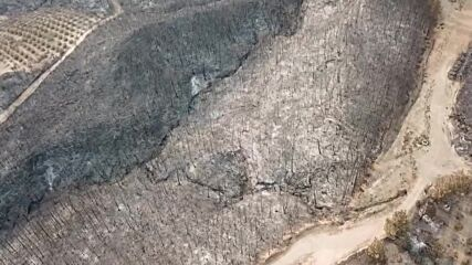 Turkey: Drone footage shows aftermath of wildfires near Manavgat