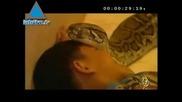 Това Дете Си Играе Със Змията Като Приятел...