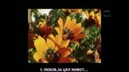 Страхотно Гръцко Парче [превод] С любов от мен за теб / Anna Vissi - Me agapi apo mena gia sena-1986
