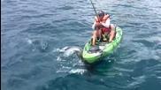 Луд рибар се бори с акула