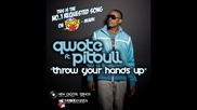 Qwote ft. Pitbull - Throw Your Hands Up