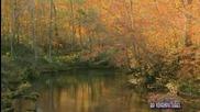 Есенна романтика - мелодия на душата