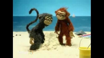 Пясъчната Мацка - Маймуна
