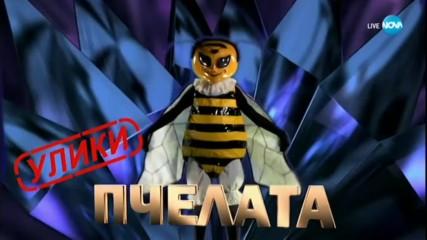 Пчелата изпълнява