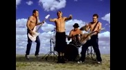 Red Hot Chili Peppers - Californication 2000 (бг Превод)