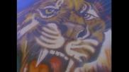 Def Leppard - Animal (high quality)