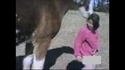 Не закачай коня