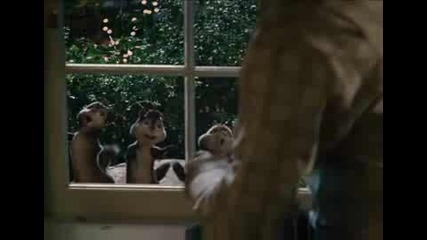 Я пак си помислете,  дали катеричките немогат да пеят!