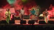 Los Delinquentes - La Primavera Trompetera (Оfficial video)